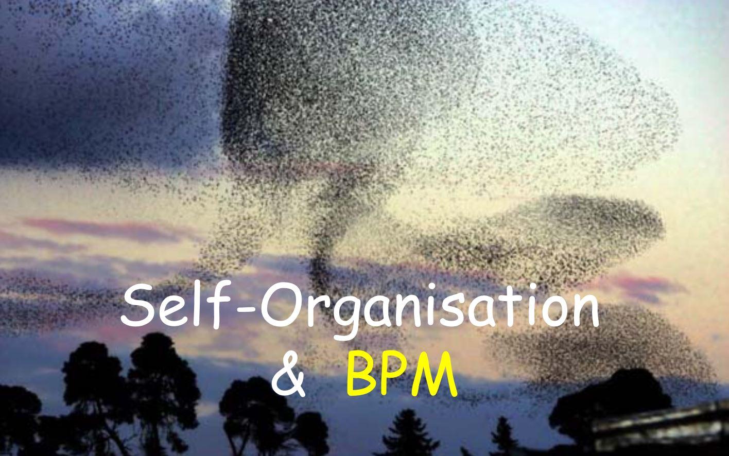 Banner Self-organisation & BPM blog