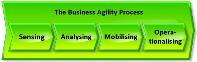 Business Agility Process