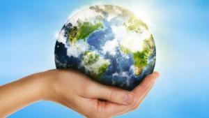 6.Sustainability