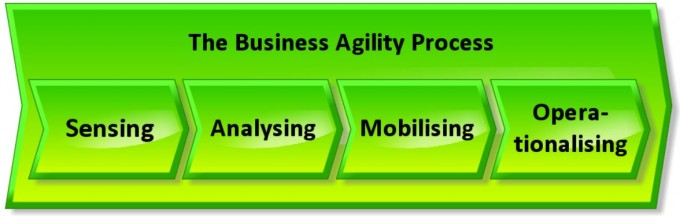 Business Agility Process